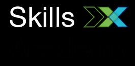 IBM Skills Academy